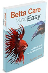 betta fish care ebook