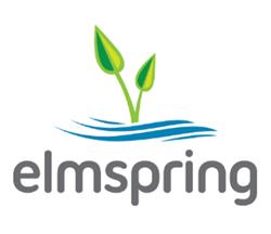Elmspring Welcomes Bob Gillespie as Executive Director