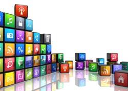 Leading Locally in a Digital World Interim Report