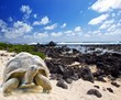 Galapagos Honeymoon Cruises