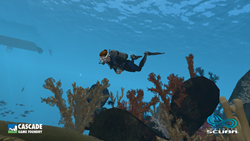 Infinite Scuba Video Game Underwater Screenshot Diving Fun