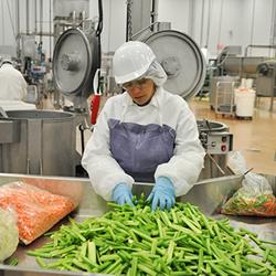 Food industry training
