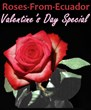 Creative Interventions Announces Valentine's Day Red Rose Special on...