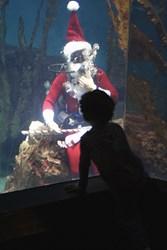 """""""Scuba Santa"""" at Maritime Aquarium."""