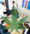 """Marijuana and the Workplace,"" a New Online Course from..."