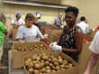 Rich Dad Education employees volunteer at the Harry Chapin Food Bank