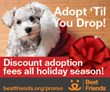 Best Friends Animal Society Launches Nationwide Holiday Adoption...
