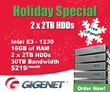 E3-1230 with 2 x 2TB HDDs and Free cPanel