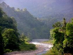 The Savegre River - Road to Rafik