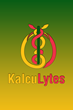 KalcuLytes, a Medical Breakthrough app, Officially Launches in iTunes