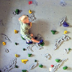 DIY Home Rock Climbing Wall