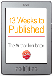 13 Weeks to Published