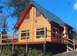 Award-winning stick-built cabin built by Harry Lippert and his Wood-Mizer LT40 Hydraulic sawmill.