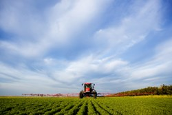 Crop Protection and Pesticides