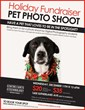 Canadian Digital Art School - Centre for Arts and Technology To Host Holiday Pet Photo Shoot To Fundraise for Local Animal Charity
