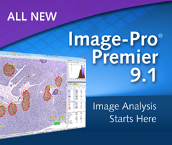 Image-Pro Premier 9.1 Released