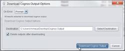 Archive Cognos Outputs