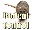 gopher control, gopher removal riverside, gopher control riverside