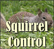 gopher control, gopher removal riverside, gopher control riverside, gopher exterminators