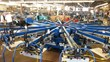 AMPRO Expands Screen-printing Production Capabilities with Equipment...
