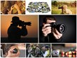 """""""The FroKnowsPhoto Beginners Guide"""" Teaches People to Capture..."""