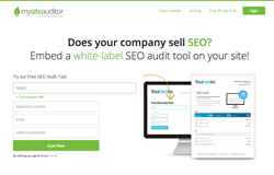 Website Audit SEO Tool