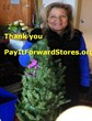 Christmas Trees and 1 Million Equity Shares Donated by Pay It Forward...
