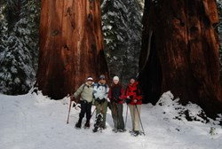 Yosemite-snowshoe-DeGrazio