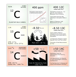 Carbon Cycle Explained