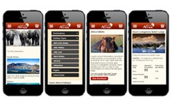 Freedom Africa's New Mobile Site