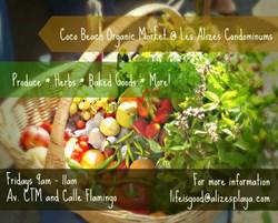 Coco Beach Organic Market