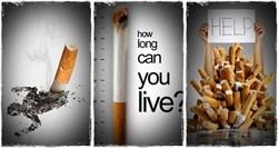 Essay on Effects of Smoking - Essay EssayDepot com