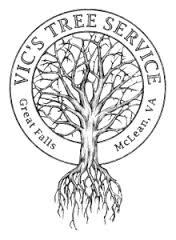 Northern Virginia Tree Service