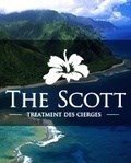 The Scott Addiction Treatment