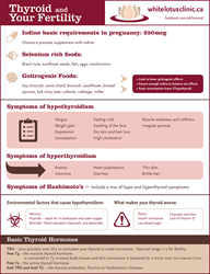 Infographic on Thyroid Health in Fertility and Pregnancy