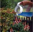 home gardening tips help