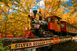 Convention-goers can ride and tour the Silver Dollar City steam railroad in Branson, Missouri.