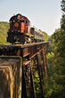 Special train rides on the Arkansas & Missouri Railroad will highlight the 2014 NRHS convention.
