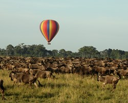 A once in a lifetime experience ballooning in Kenya's Maasai Mara