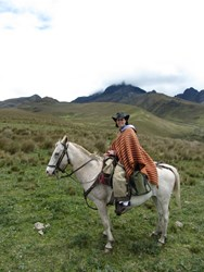 Horseback Riding at the Base of Cotopaxi Volcano in the Andes Mountains of Ecuador