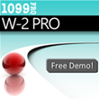 1099 Pro, Inc. Releases 2014 W-2 Software for Printing & eFiling