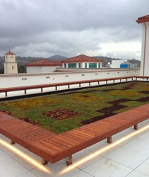 SDSU LiveRoof Green Roof