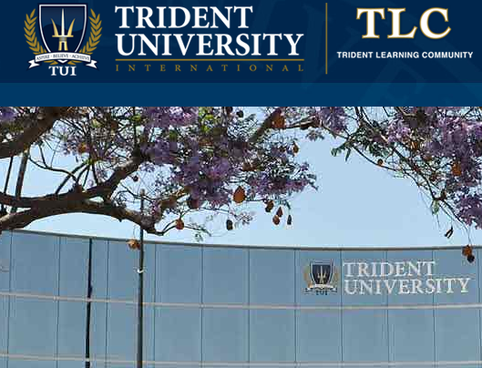 trident university slp Trident ecol100 module 4 slpmodule 4 - slphabitat loss, land use, and conservationfor this module's slp assignment read the following articles:duncan, emma all creatures great and small.