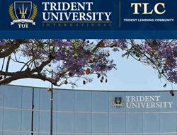 Trident TLC