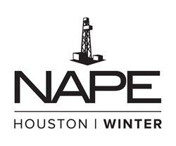 2014 Winter NAPE logo
