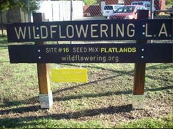 Highland Hall Waldorf School's Wildflower LA Sign