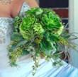 Norway Gardens Examines Wedding Flower Trends