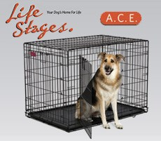 PetStreetMall Partners with A.C.E. Dog Crate