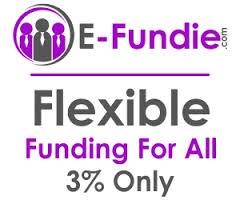 E-Fundie Logo Banner