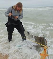 St. Augustine Lighthouse investigates shipwreck